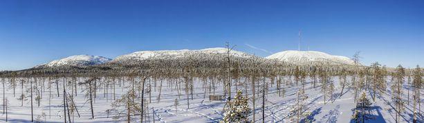 Maisema viiden tunturin jonosta Tunturiaavan lintutornista. Tämä osa Pyhä-Luoston kansallispuistoa juhlii tänä vuonna 80-vuotisiaan.