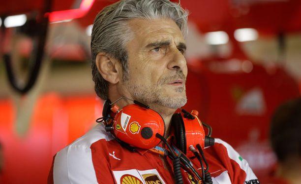Jos Ferrari voittaa, Rauta-Mauri joutuu pitkälle kävelyreissulle.