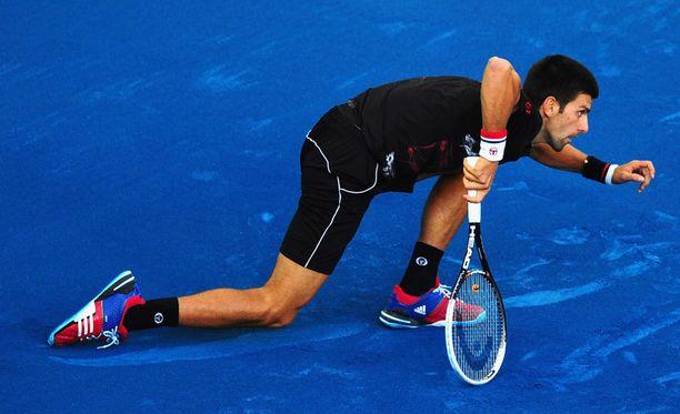 Novak Djokovic ei ole sinisen massakentän ystävä.