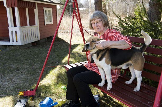 Anna-Maija Juvela sanoo elämästään, että se on ollut tavallista äitiyttä. Hellyyttä riittää lasten lisäksi ajokoira Linkulle, joka oli Matti-puolison silmäterä.