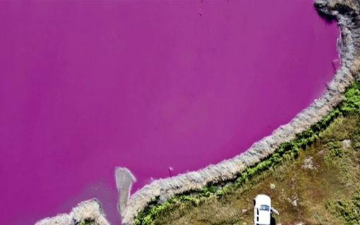Hätkähdyttävä näky: Kaksi järveä muuttui vaaleanpunaisiksi Argentiinassa