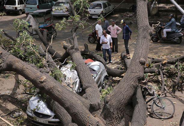 Myrskyt ovat riepotelleet Intiaa jo viikkojen ajan. Tämä puu kaatui Delhissä kaksi viikkoa sitten, jolloin kymmenet ihmiset kuolivat maan eri osissa ukkosmyrskyissä.