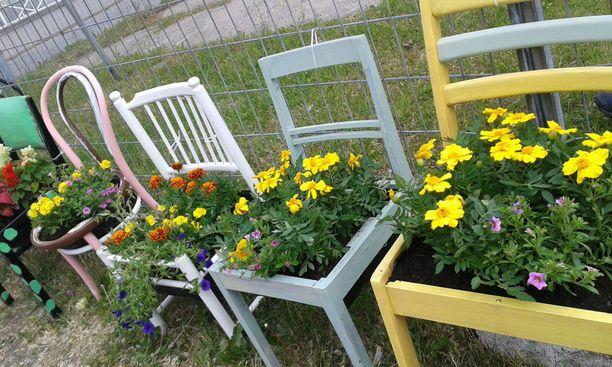 Viime vuonna aita koristeltiin kukkatuolein.