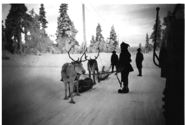 Tukin ajoa Lapissa. 1960-luvulla toimenkuvaan kuuluivat myös tukkiajot Lapissa.
