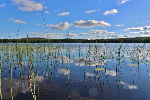 Vesilläliikkujien ja uimareiden kannattaa varautua samanlaiseen sinileväkesään kuin parina edellisenä vuonna.