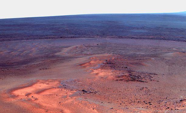 Opportunityn maahan lähettämää kuvaa Marsin pinnalta.