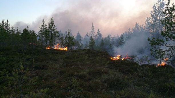 Etelä-Pohjanmaalla satelliitti on hälyttynyt muun muassa maastopaloille. Kuva: Etelä-Pohjanmaan pelastuslaitos.
