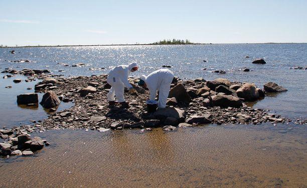 Vapaaehtoiset keräävät öljyä Raahessa.