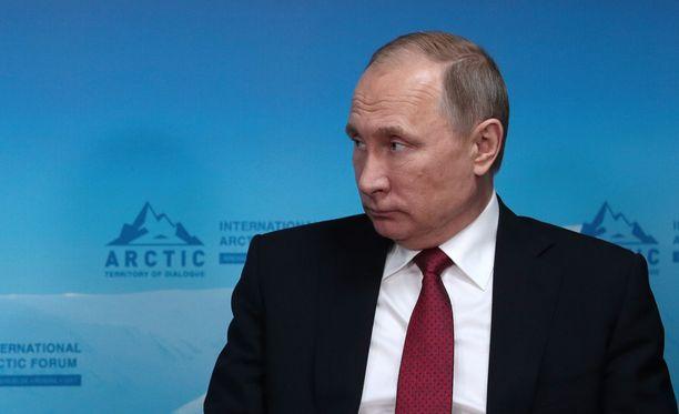 Venäjän presidentti Vladimir Putin kommentoi vetoomuksia pidätettyjen protestoijien puolesta.