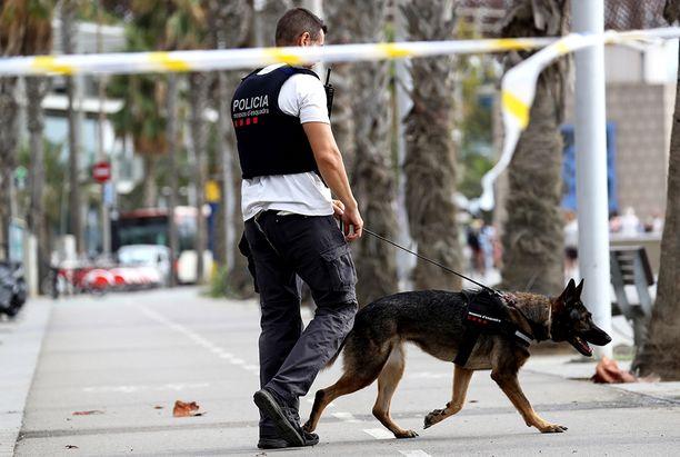 Poliisi vahtii koiran kanssa Barcelonan keskustassa.