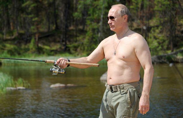 Putin pullistelee aina silloin tällöin ilman paitaa.
