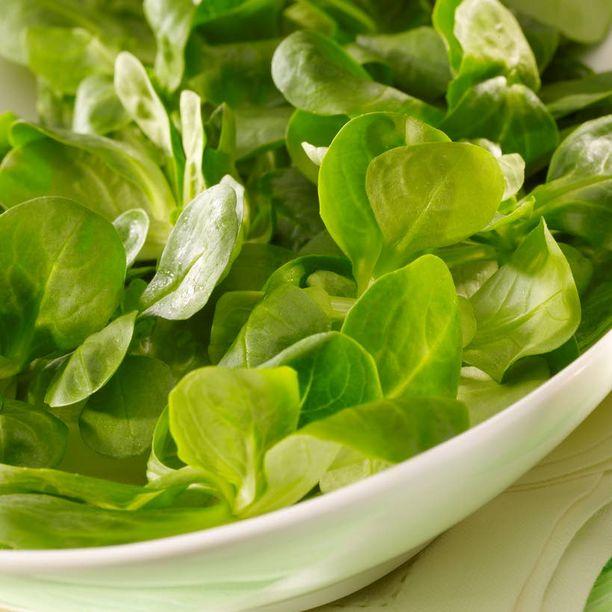 SALAATTIA Karppaaja saa syödä runsaasti salaattia ja kasviksia.
