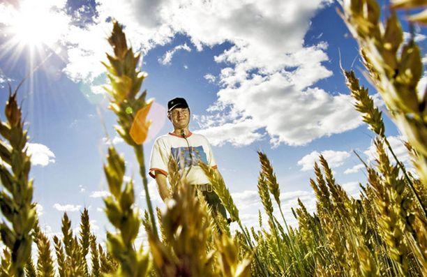Maanviljelijä Tommi Yrjölä harjoittaa syövän suhteen keskimääräistä turvallisempaa ammattia.