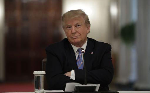 """Veljentytär paljastaa Donald Trumpin """"narsismin"""" – presidentti pyrkii estämään kirjan julkaisun"""