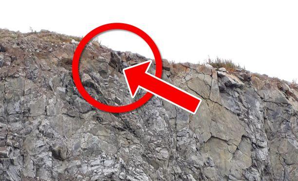 Koira jäi loukkuun kielekkeelle, josta pudotusta olisi ollut vielä 20 metriä. Klikkaamalla kuvan saa suuremmaksi.