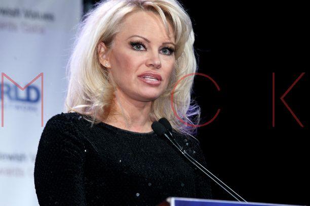 Pamela Anderson uskoo Julian Assangeen.