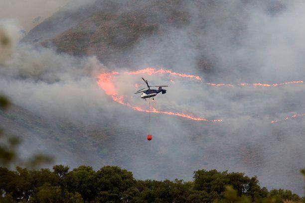 Palopaikka on Bermejan vuoristossa lähellä Esteponaa, noin 50 kilometriä Fuengirolasta länteen.