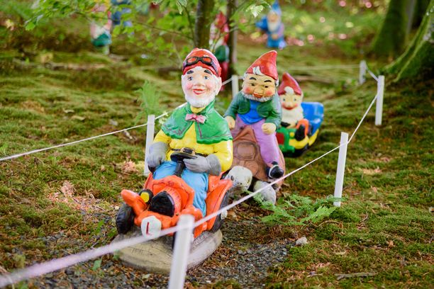 Pienestä West Putfordin kaupungista löytyy puutarha, jossa temmeltää laumoittain minitonttuja.