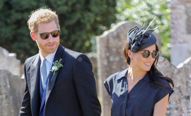 Prinssi Harry ja herttuatar Meghan ovat hankkineet uuden lemmikin, kertoo Daily Mail.