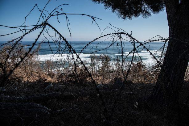 Piikkilanka-aita reunustaa valtamerta ja mannerta kilometrien matkalta Etelä-Korean puolella.