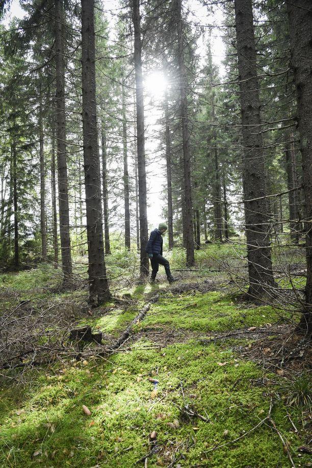Suomalainen onnellisuus syntyy arkisista asioista ja tasa-arvoisuudesta.