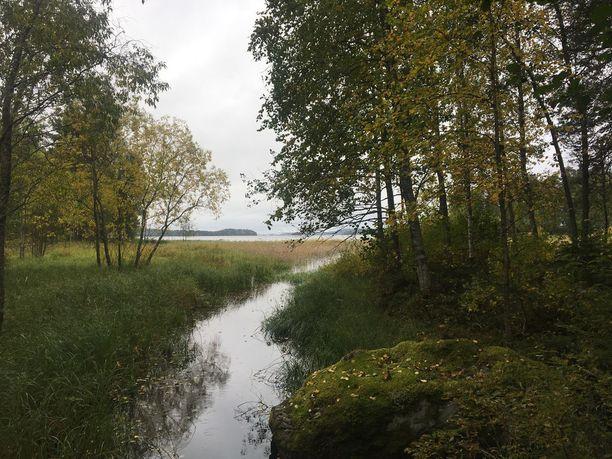 Bomban karjalaiskylä sijaitsee Pielisen rannalla.