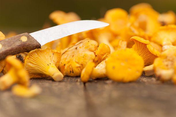 Sieniveitsen heiluttelu toi venäläismiehelle sakkotuomion. Kuvituskuva.