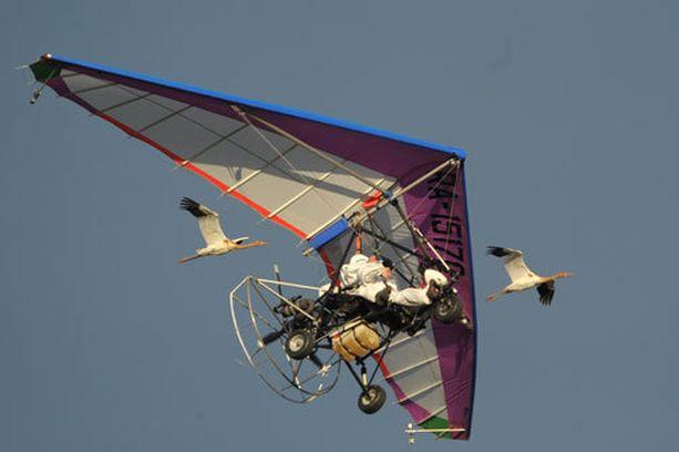 Putin on eläinten ystävä. Tässä hän lentää kurkien kanssa.