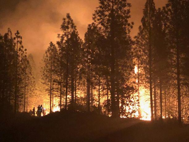 Tuhansien ihmisten kodit ovat tuhoutuneet 8.11.2018 Pohjois-Kaliforniasta alkaneessa maastopalossa.