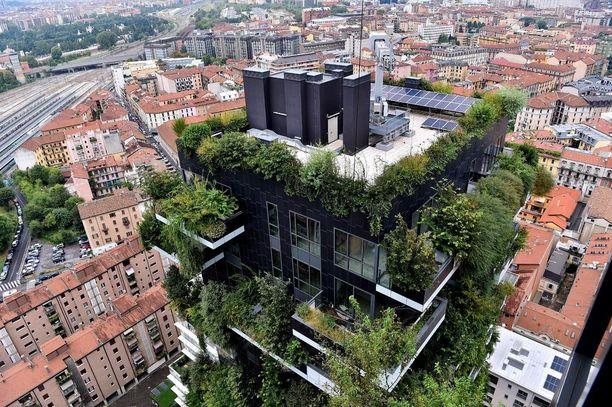 Talot suunnitteli milanolainen arkkitehtitoimisto Boeri Studio. Yritys tekee erilaisia metsäprojekteja ympäri maailmaa.