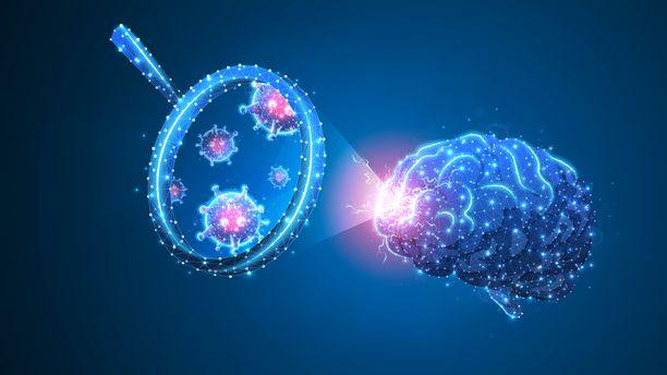 Koronavirus ei näyttäisi eksyvän aivoihin asti, mutta jollakin mekanismilla se kuitenkin voi vaikuttaa aivojen ja hermoston toimintaan.