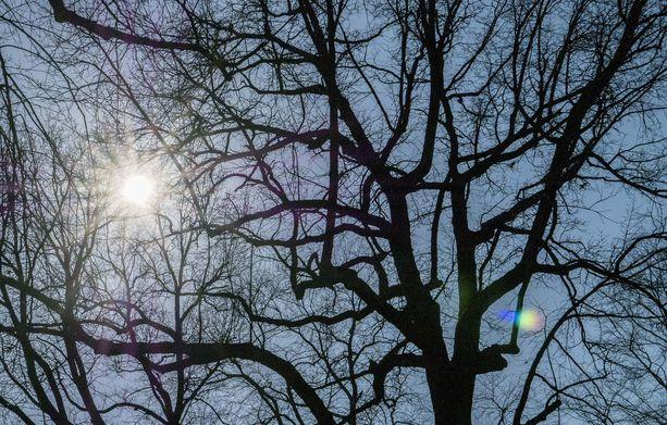 Viikonloppuna paistaa monin paikoin aurinko, kertoo Ilmatieteen laitos.