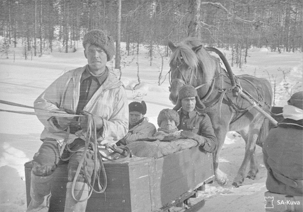 Viimeisiä haavoittuneita viedään ensiavun jälkeen hoitoon Saunajärven huoltotiellä Kuhmossa heti rauhan julistuksen jälkeen 13. maaliskuuta 1940.  Hevosten urakka rintamalla oli moninainen: ne muun muassa kuljettivat tykistöä, ampumatarvikkeita, ja kenttäkeittiöitä taistelijoille sekä kuljettivat haavoittuneita sidontapaikoille.