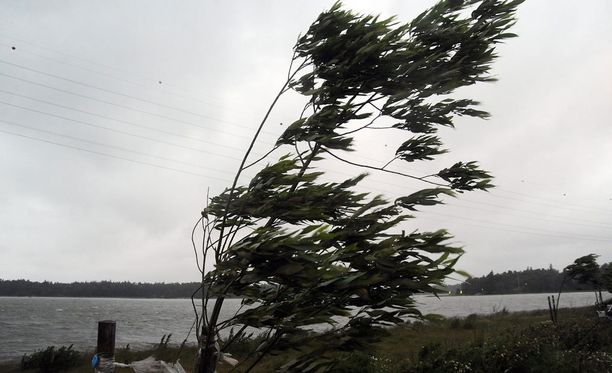 Puuskissa myrskylukemiin saatetaan sunnuntaina päästä, mutta muuten ennustettu kesämyrsky jää toteutumatta.