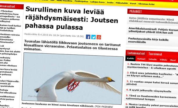 Iltalehti kertoi joutsenen onnettomasta tilanteesta eilen.