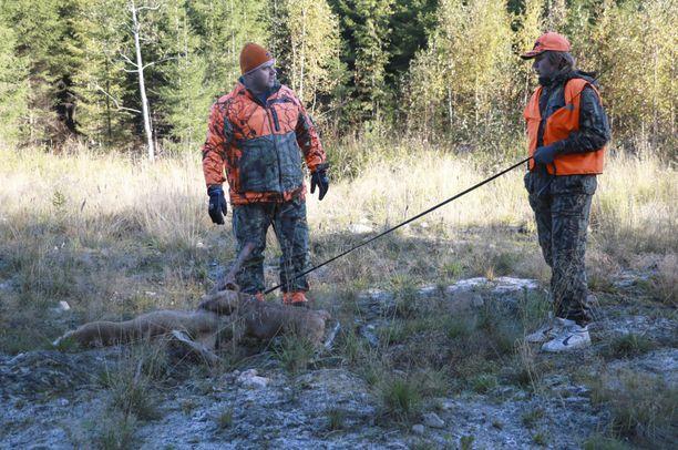 Puhekieleen vakiintuneella peura-lyhenteellä tarkoitetaan jutussa lajina valkohäntäkaurista/-peuraa. Valkohäntäkauriista käytetään Suomessa yleisimmin nimitystä valkohäntäpeura, vaikka se ei kuulukaan peurojen sukuun.