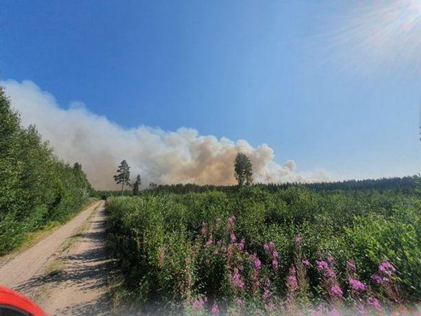 Maastopalo on aiheuttanut runsaasti savua. Tämä pelastuslaitoksen julkaisema kuva on maanantailta.