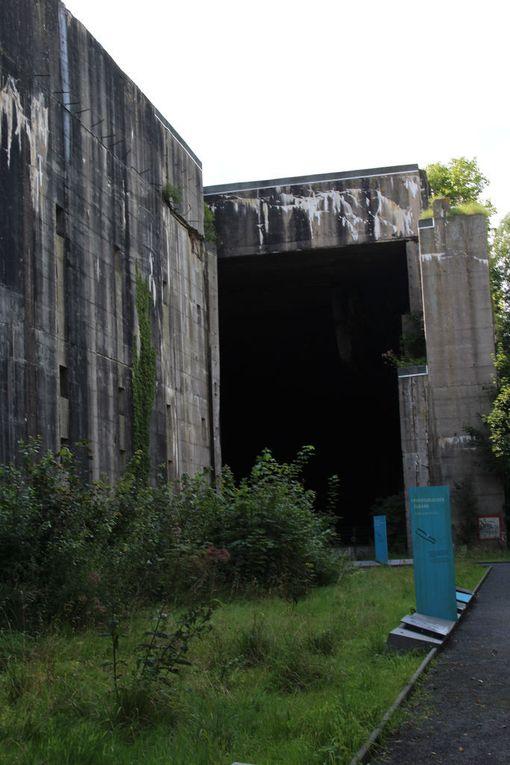 Siniset kyltit kertovat, että tässä on muistopolun pysäkkejä. Niiden luona on tietoja bunkkerin rakennusvaiheista ja sitä tehneistä ihmisistä.