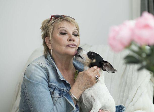 Nancy-koira lähti Hannelen mukaan kesäteatteriin.