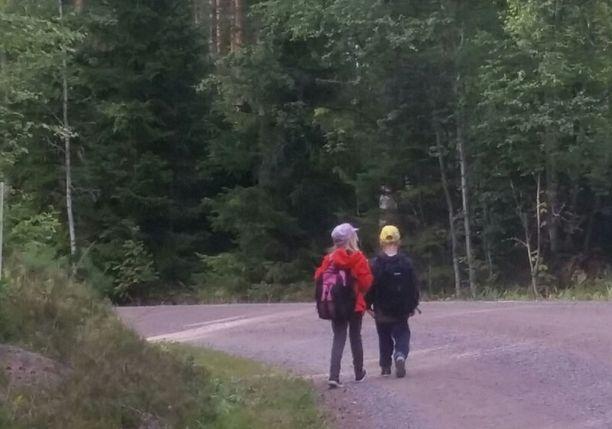 Vihtiläinen Aino ja pikkuveli Onni joutuvat kävelemään koulukyytiin 1,3 kilometriä. Tiellä kulkee raskasta liikennettä.