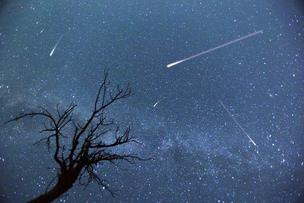 Geminidien parven meteoreja kannattaa yrittää bongata mahdollisimman pimeässä paikassa, kaukana kaupunkien keskustoista. Kuvituskuva.