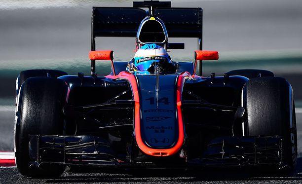 Fernando Alonson kolarin syystä ei ole vieläkään olemassa virallista tietoa.