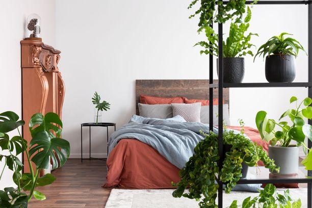 Tuettuja tyynyjä vasten on mukava nojailla, kun lukee kirjaa tai selailee puhelinta.