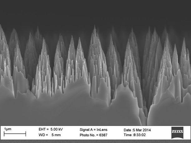 Hele Savinin tutkimusryhmä on kehittänyt mustia piikennoja, joiden pintaa peittää atomikerroskasvatuksella tehty piikikäs ohutkalvo. Rakenne estää valoa heijastumasta ja parantaa näin kennon hyötysuhdetta.