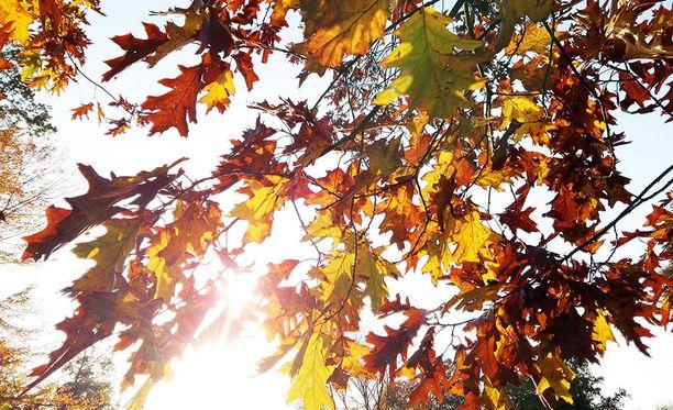 Tiistain sää on suuressa osassa maata aurinkoinen ja poutainen.