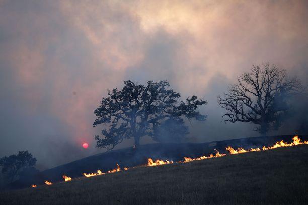 Kaliforniassa riehuvat maastopalot ovat aiheuttaneet valtavasti tuhoa.