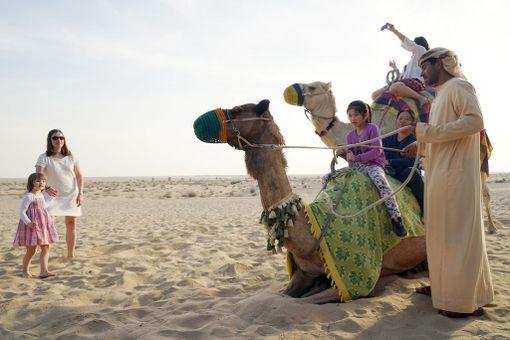 Kamelit kuuluvat aavikkoelämään ja niillä on myös mahdollista päästä ratsastamaan Dubaissa.