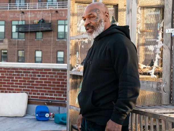Mike Tyson on kertonut aikovansa palata nyrkkeilykehään 15 vuoden tauon jälkeen. Nyt miehestä on tekeillä myös elokuva.