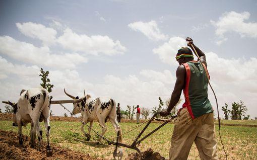 Jutta Urpilainen matkustaa Afrikan pahimpaan kriisipesäkkeeseen, jossa kytee muuttopaineita – näin EU toimii