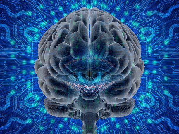 Fysiikkaa ja filosofiaa. Aivojen mikrotubulus-nimisten proteiinien kvantti-ilmiöt saattavat teorian mukaan selittää filosofian klassikko-ongelman.